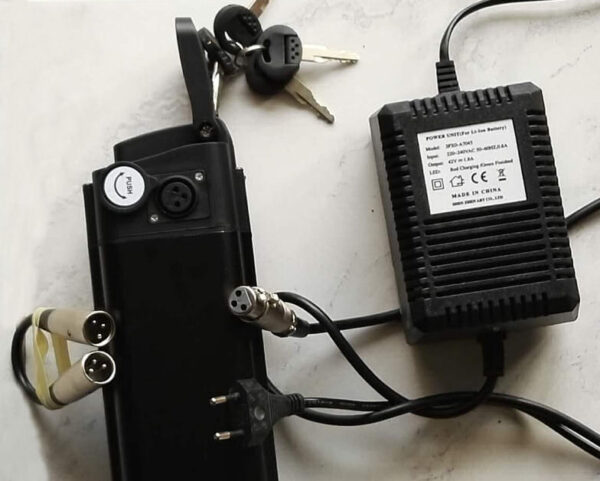 Chargeur de batterie lithium 36V pour vélo électrique