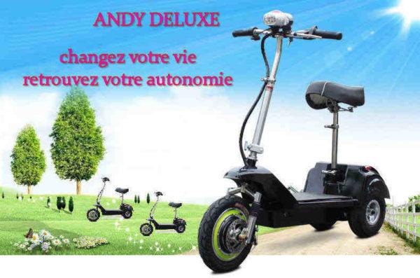 Trottinette électrique 3 roues andy delux pour les seniors et les personnes ayant un problème de marche