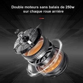 Trotinette électrique 4 roues pliant easy move avec double moteurs 250w
